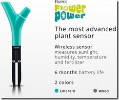 Flower_Power-450x376